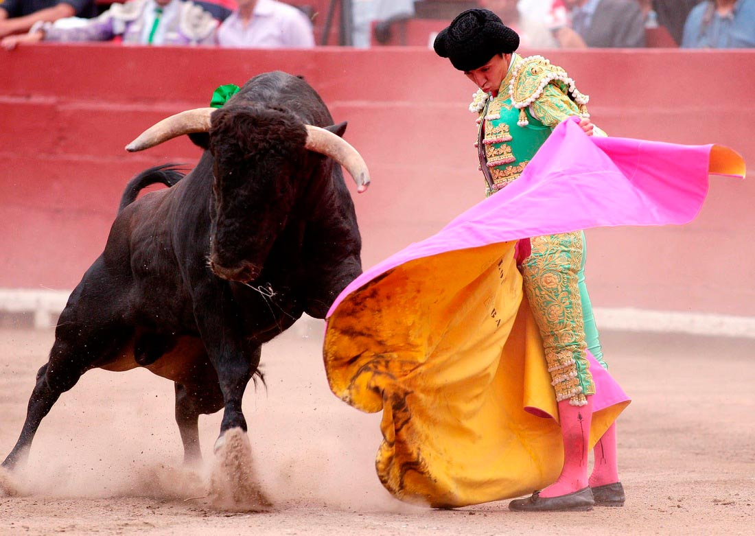 Bullfighting Mexico